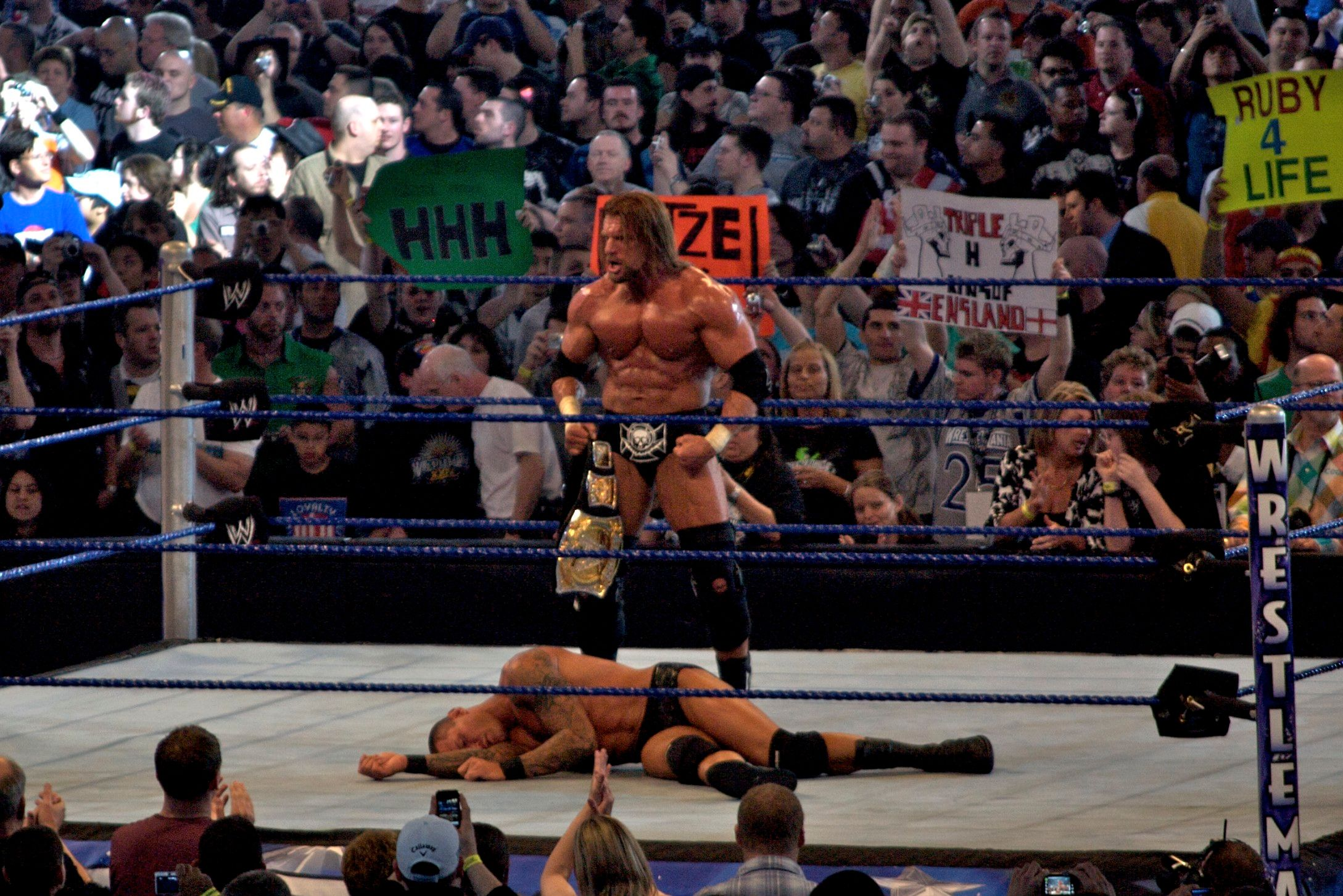WrestleMania_XXV_-_Triple_H_vs_Orton_2