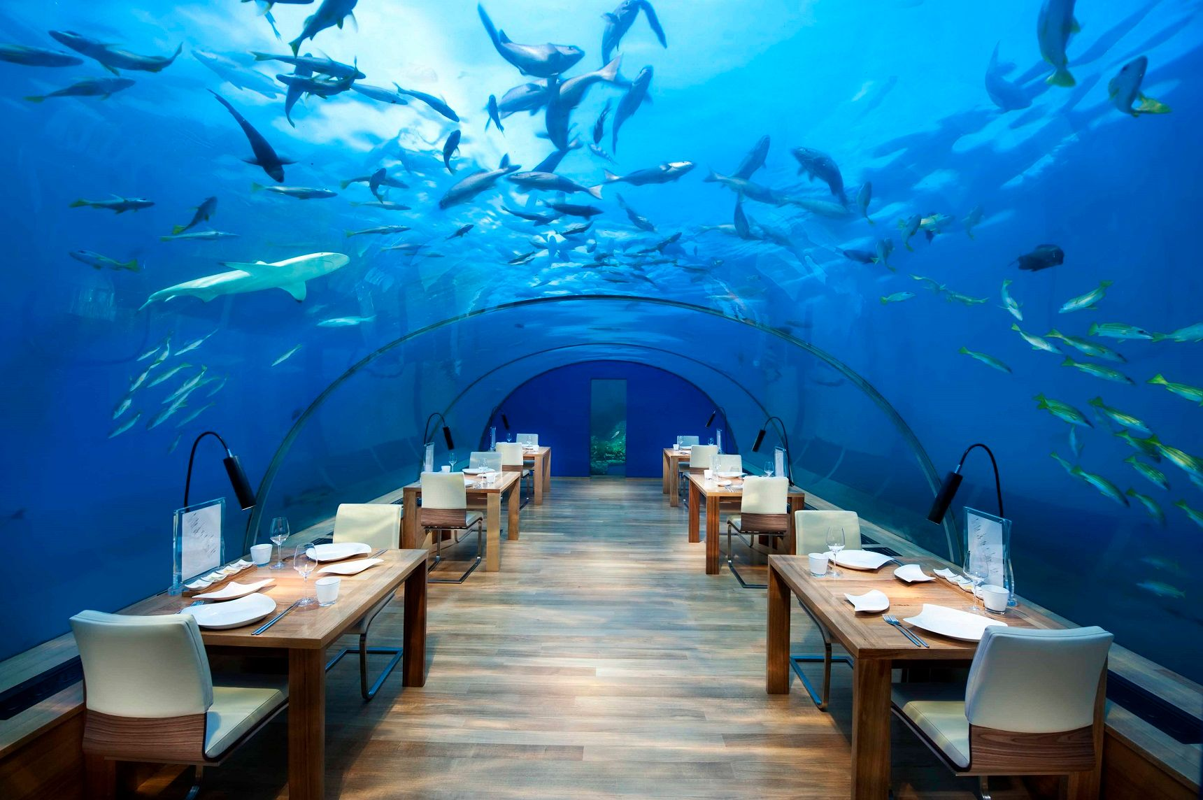 10 Restaurants You Won't Believe Actually Exist