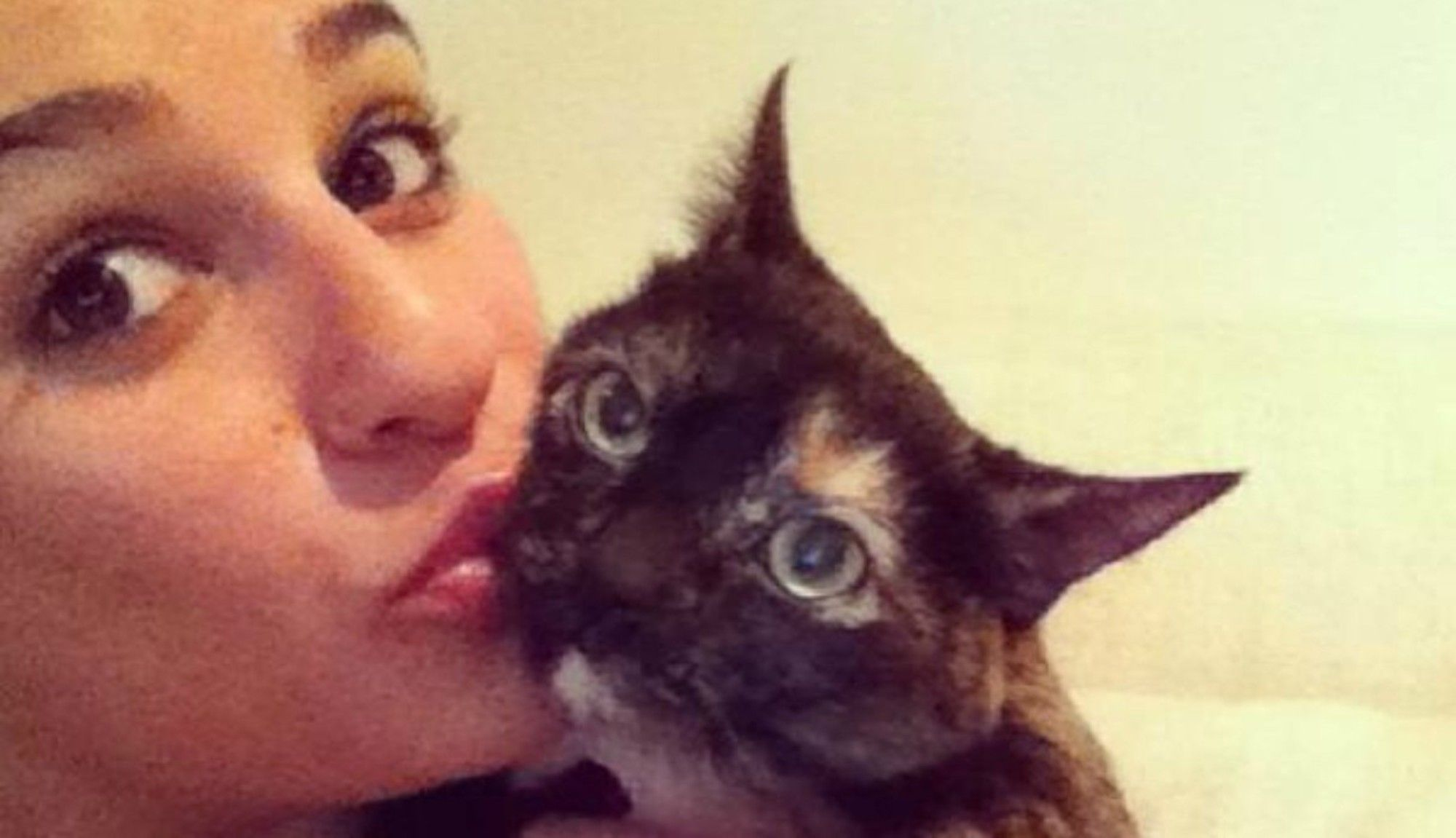 20 Celebs You Didn't Know Are Cat Lovers