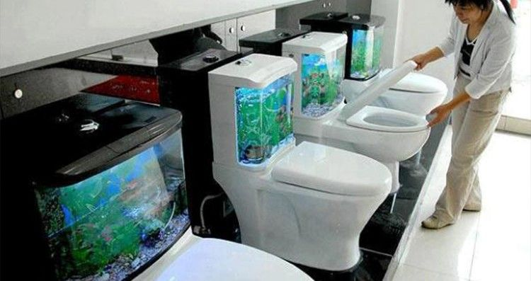 10 Of The Weirdest Toilets Ever Made