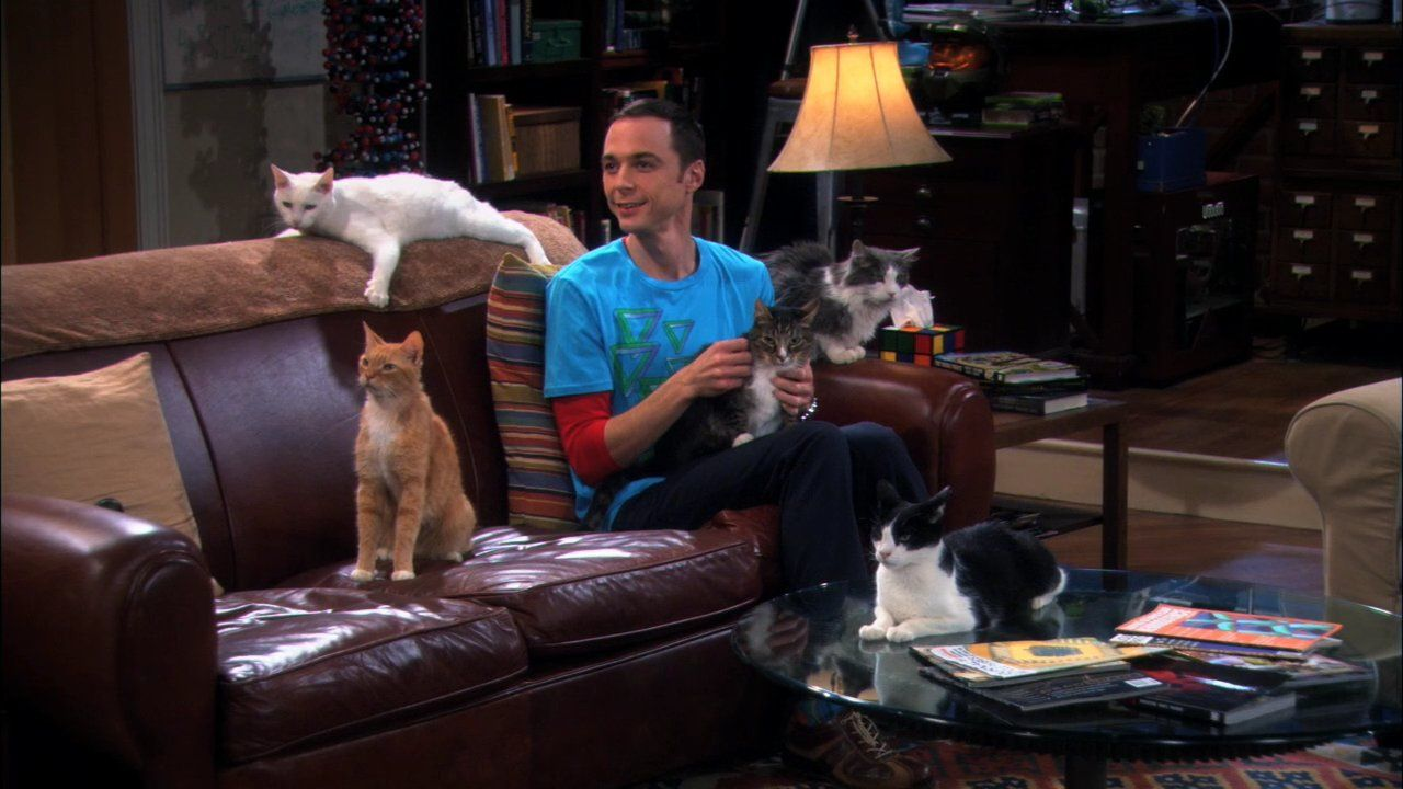 Top 10 Glaring Mistakes in The Big Bang Theory