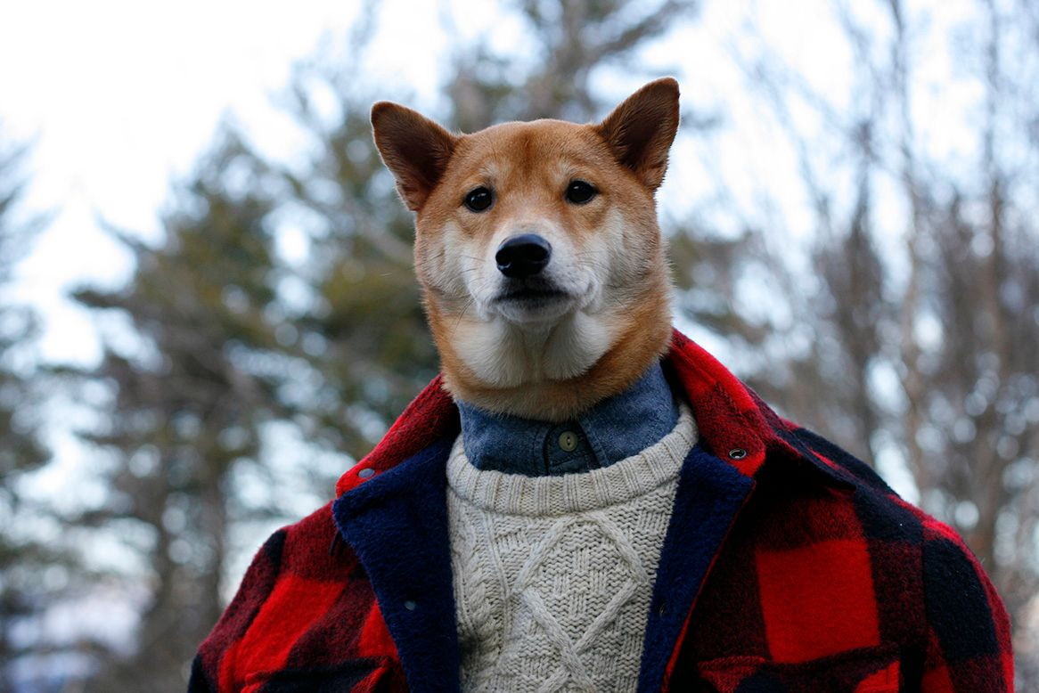10. Menswear Dog