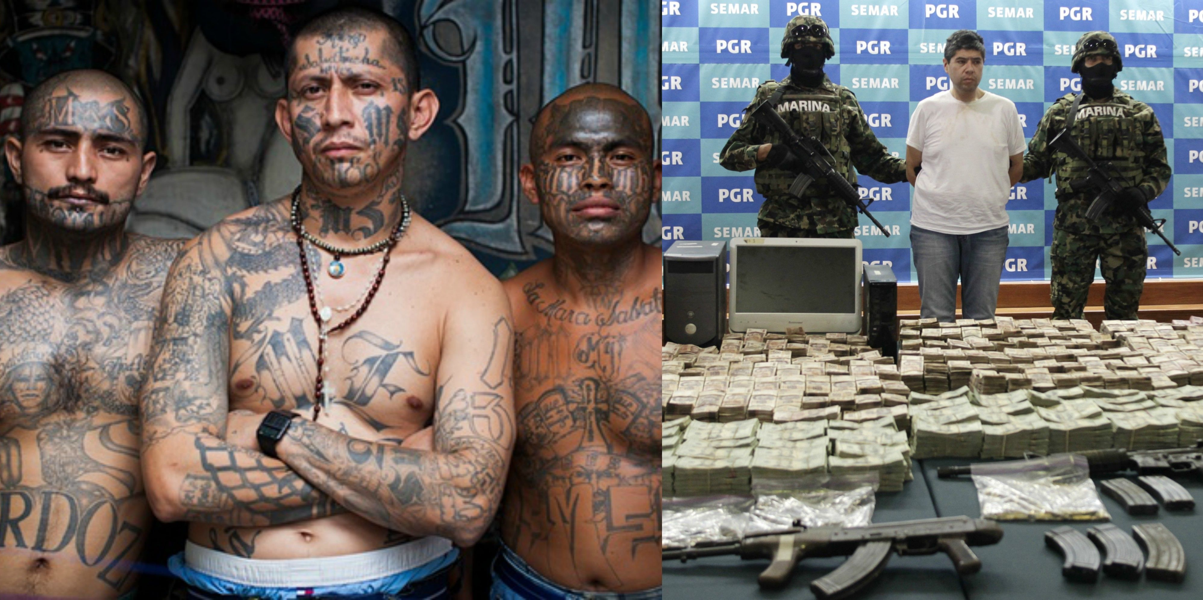 15 disturbing facts about mexican drug cartels therichest