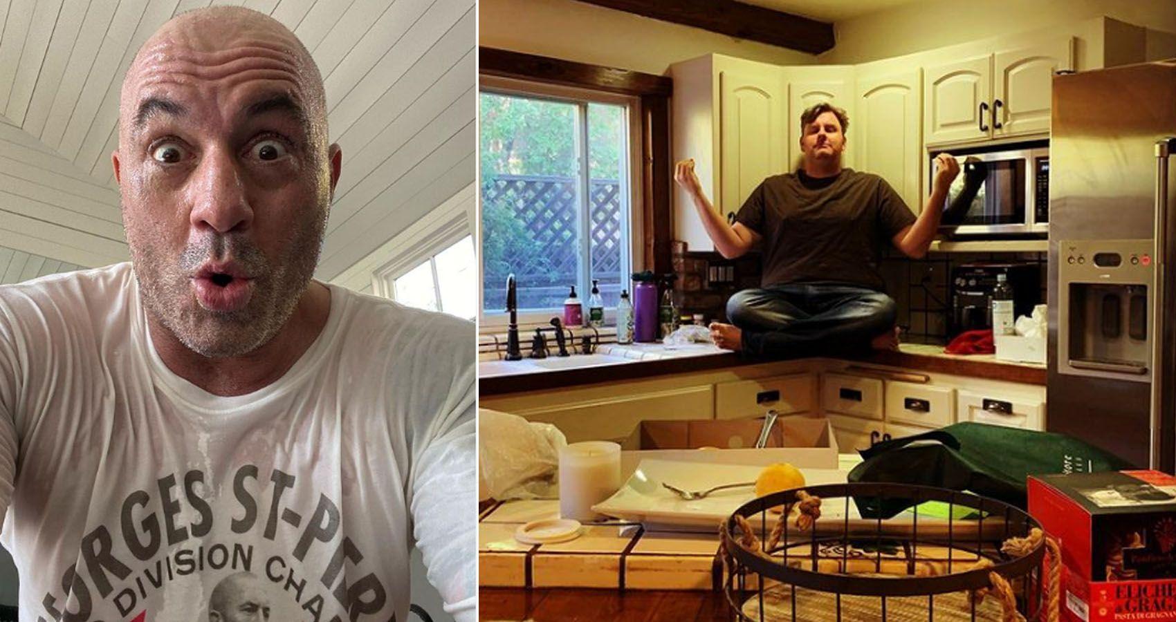 The New Joe Rogan? How Tim Dillon is Making Millions On Patreon