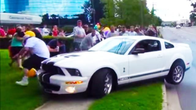 Hilarious Mustang Mistakes You Can't Miss